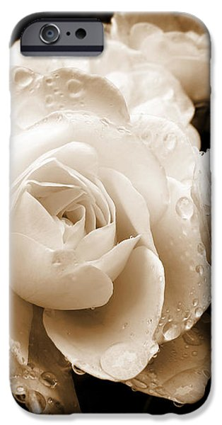 Sepia Roses with Rain Drops iPhone Case by Jennie Marie Schell