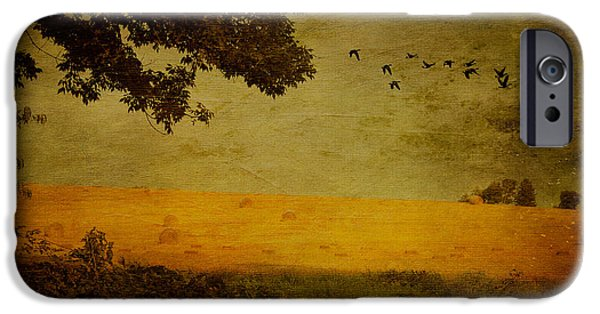 Hayfield iPhone Cases - September iPhone Case by Lois Bryan