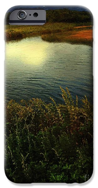 Salt Marsh. New England iPhone Cases - September Moon over Salt Marsh iPhone Case by RC DeWinter