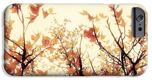 Fall iPhone Cases - September Song iPhone Case by Amy Tyler