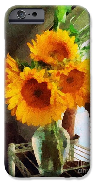 Furniture iPhone Cases - September Sunglow iPhone Case by RC deWinter