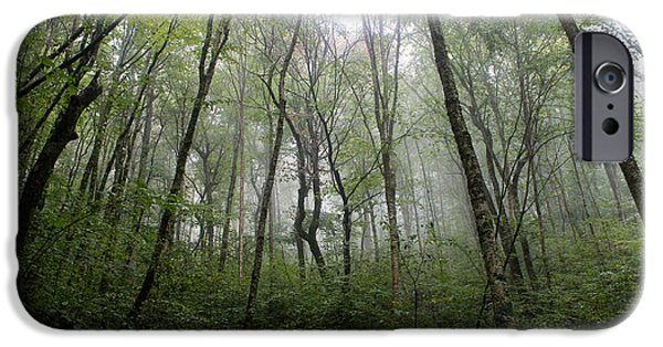 Fog Mist iPhone Cases - Serenity iPhone Case by Brett Leatherman