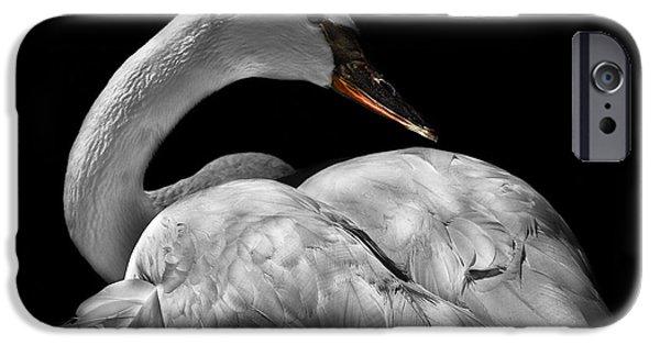 Swans... iPhone Cases - Serenity iPhone Case by Debra and Dave Vanderlaan