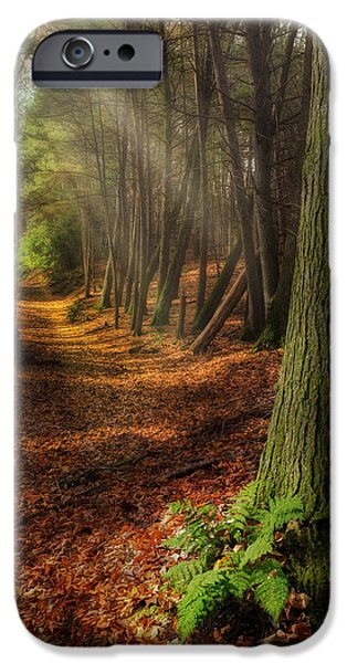 Fog Mist iPhone Cases - Serenity Of The Forest iPhone Case by Bill  Wakeley
