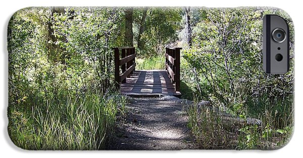 Pathway iPhone Cases - Serenity iPhone Case by Sheri Keith