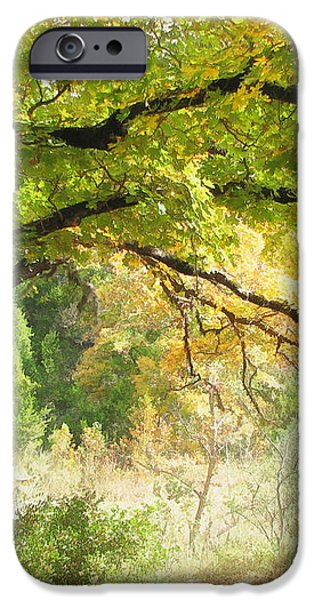 Serenity iPhone Case by Wendy J St Christopher