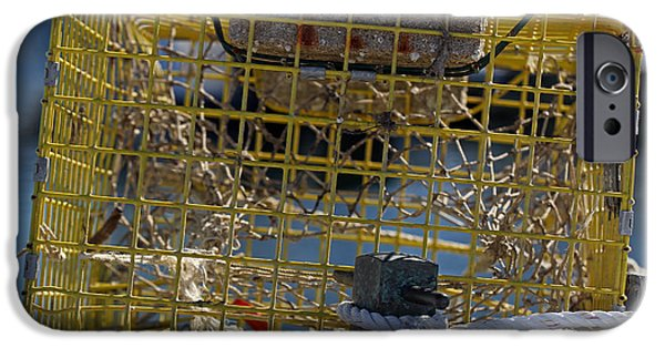 Harbor Sesuit Harbor iPhone Cases - Sesuit Harbor Lobster Cage iPhone Case by Juergen Roth