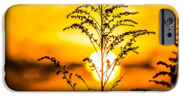Recently Sold -  - Agricultural iPhone Cases - Setting Sun iPhone Case by Parker Cunningham
