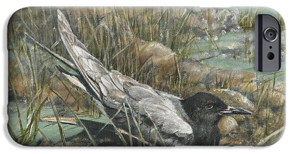 Tern iPhone Cases - Seven Black Terns iPhone Case by Rob Dreyer AFC