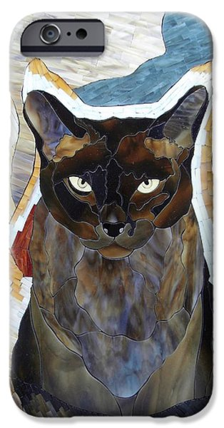 Print Glass iPhone Cases - Seven Cats iPhone Case by Suzanne Tremblay