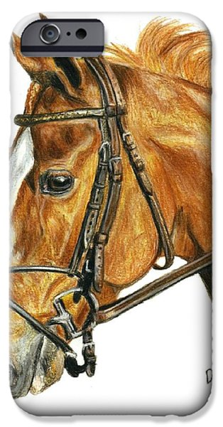 Shackleford iPhone Case by Pat DeLong