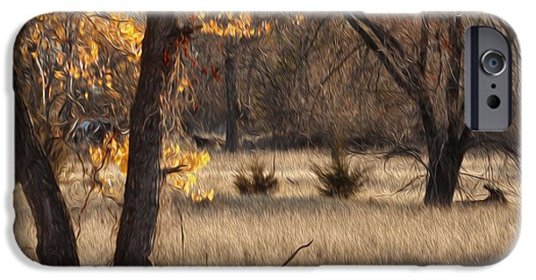 Nebraska iPhone Cases - Shades Of Autumn iPhone Case by Bill Kesler