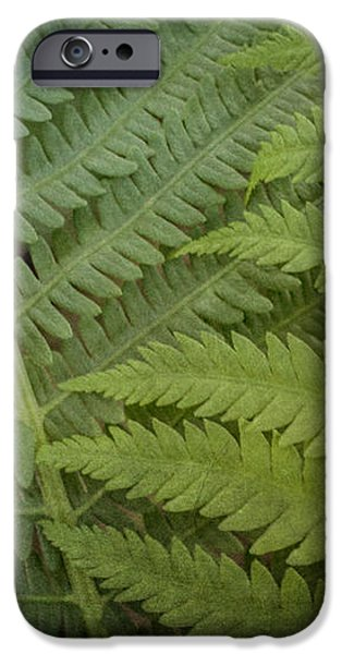 Shades of Green iPhone Case by Jeff Swanson