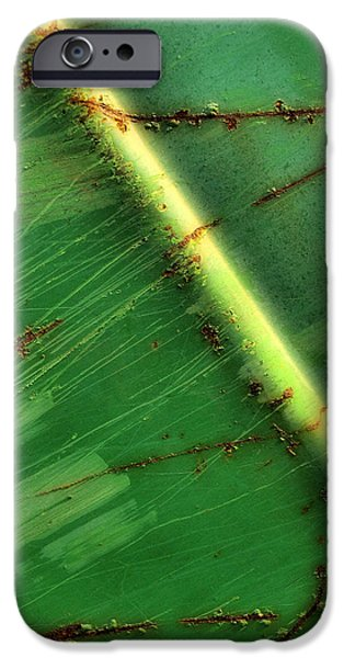 Shade Cover iPhone Cases - Shades Of Green iPhone Case by Tom Druin