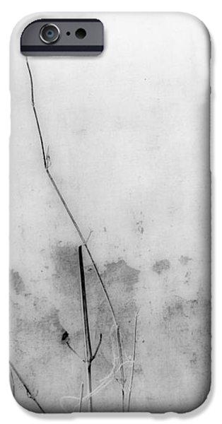 Shades of Grey iPhone Case by Prakash Ghai