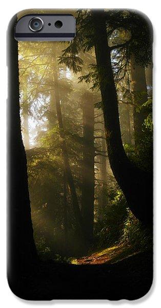 SHADOW DREAMS iPhone Case by Jeff  Swan