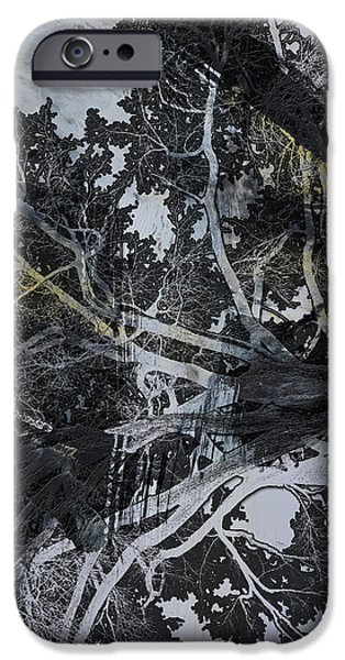 Tree Art Print iPhone Cases - Shadows 3 iPhone Case by Andrada Anghel