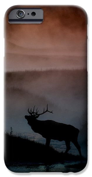 Shadows along the Madison iPhone Case by Gary Langley