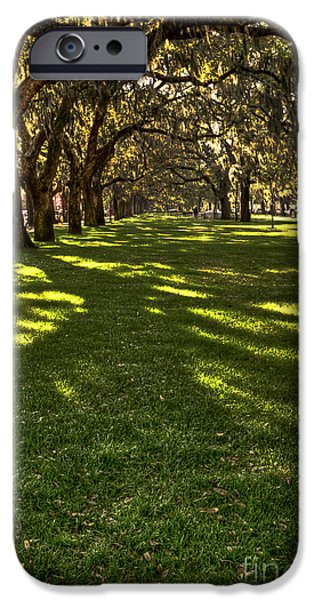 Chatham iPhone Cases - Shadows of Emmet Park Savannah iPhone Case by Reid Callaway