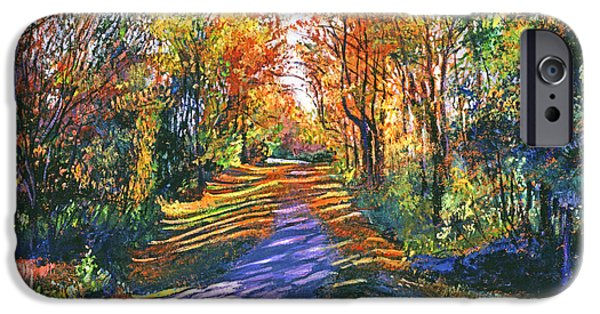Country Road iPhone Cases - Shady Lane iPhone Case by David Lloyd Glover