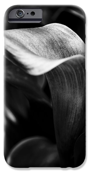 Floral Photographs iPhone Cases - Shapely As a Lily iPhone Case by Christi Kraft