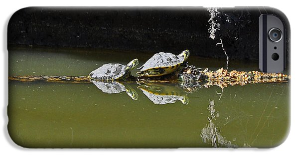 Slider Photographs iPhone Cases - Sharing Sliders iPhone Case by Al Powell Photography USA