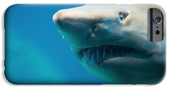 Danger iPhone Cases - Shark iPhone Case by Johan Swanepoel