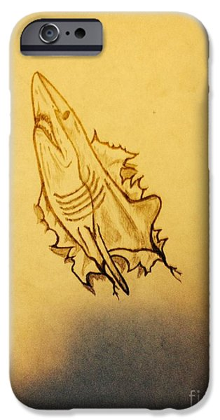 Shark Drawings iPhone Cases - Shark  iPhone Case by Joshua  Richards
