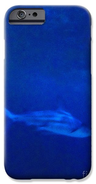 Shark iPhone Cases - Shark iPhone Case by Margie Hurwich