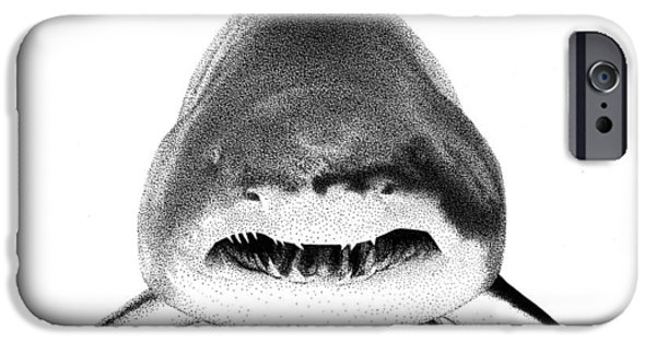 Shark Drawings iPhone Cases - Shark iPhone Case by Scott Woyak