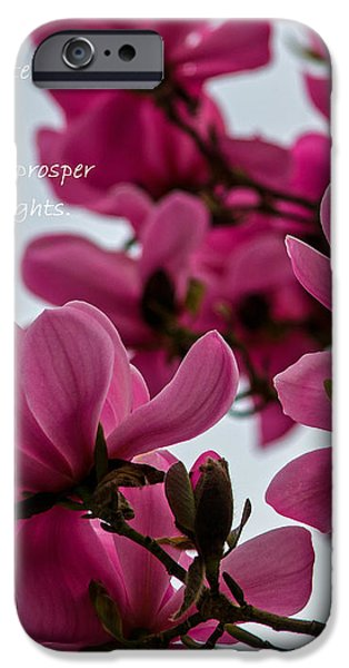 She Helps Me Grow - Mother's Day iPhone Case by Jordan Blackstone