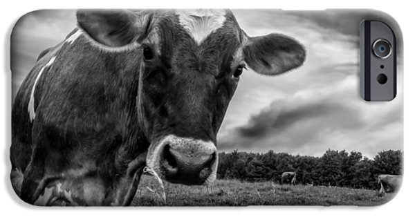 Animal Photographs iPhone Cases - She wears her heart for all to see iPhone Case by Bob Orsillo