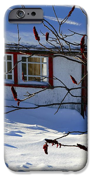 Shed in winter iPhone Case by Sophie Vigneault
