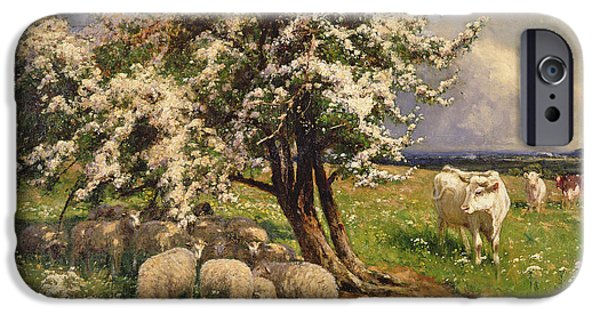 Farm Fields Paintings iPhone Cases - Sheep and cattle in a landscape iPhone Case by Arthur Walker Redgate