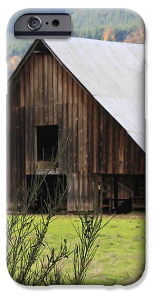Sheep Barn iPhone Case by Katie Wing Vigil
