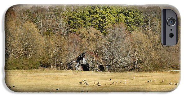 Old Barns iPhone Cases - Sheep in the South iPhone Case by Jai Johnson