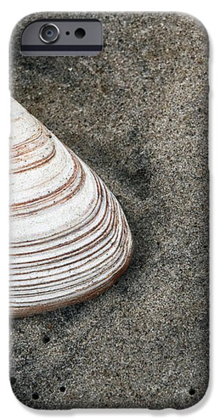 Shell in the Sand iPhone Case by John Rizzuto