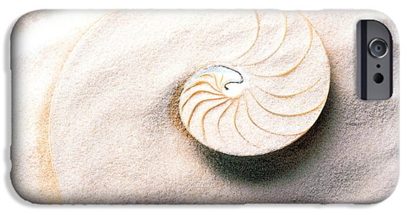 Shell Spiral iPhone Cases - Shell Spiraling Into Wavy Sand Pattern iPhone Case by Panoramic Images
