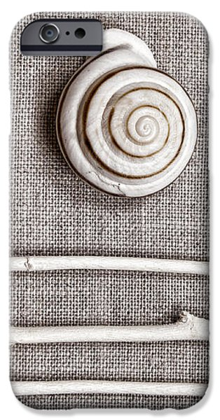Shells and Sticks iPhone Case by Carol Leigh