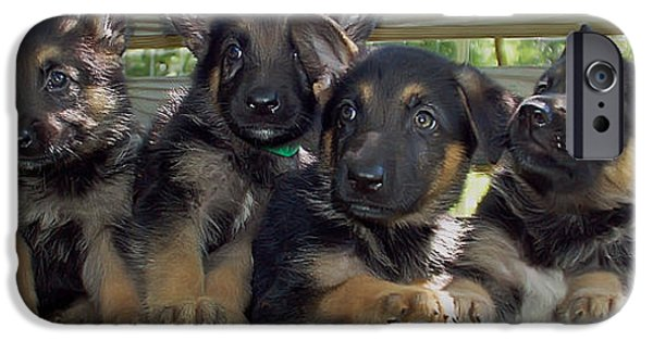 Black Dog iPhone Cases - Shepherd Pups 2 iPhone Case by Aimee L Maher Photography and Art