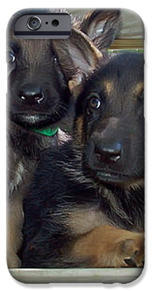Shepherd Pups 2 iPhone Case by Aimee L Maher Photography and Art