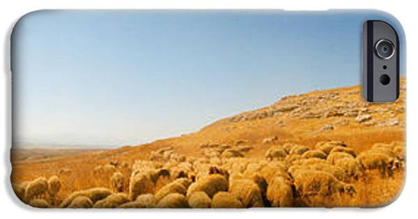 Sheep Grazing iPhone Cases - Shepherd Standing With Flock Of Sheep iPhone Case by Panoramic Images