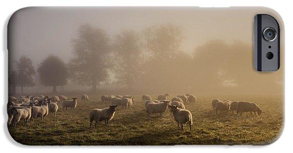Mist iPhone Cases - Shepherding iPhone Case by Chris Fletcher