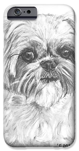 Close Up Drawings iPhone Cases - Shih Tzu Portrait in Charcoal iPhone Case by Kate Sumners