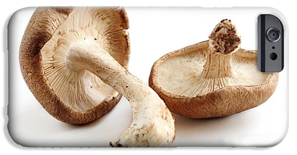 Mushroom iPhone Cases - Shiitake mushrooms iPhone Case by Elena Elisseeva