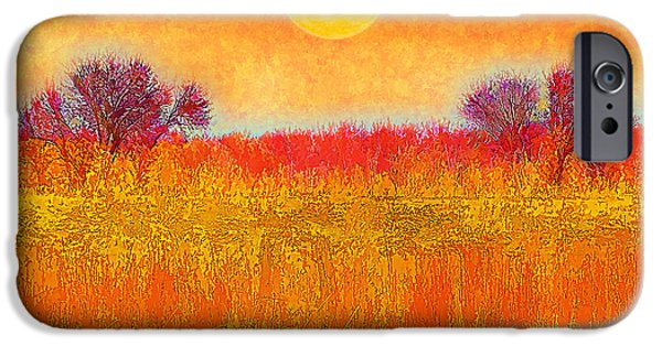 Autumn iPhone Cases - Orange Sunset Shimmer - Field In Boulder County Colorado iPhone Case by Joel Bruce Wallach