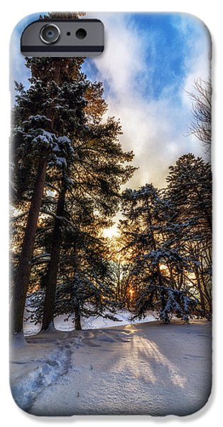 Snowy Night iPhone Cases - Shining Through iPhone Case by Mark Papke