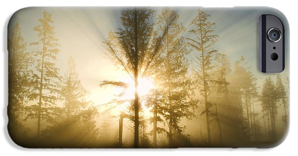 Sun Breakthrough iPhone Cases - Shining Through iPhone Case by Peggy Collins