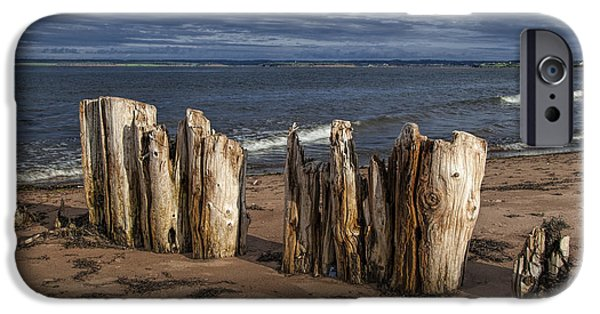 Canada Photograph iPhone Cases - Shore Pilings on Prince Edward Island iPhone Case by Randall Nyhof