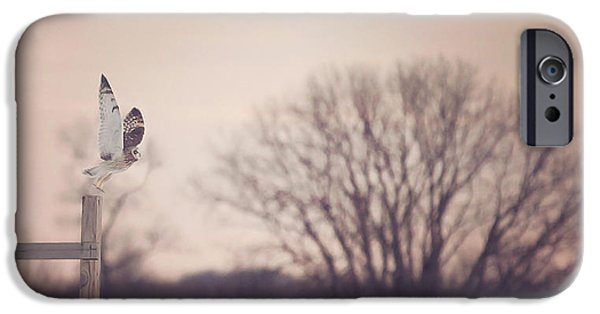 Flight iPhone Cases - Short Eared Owl at Dusk iPhone Case by Carrie Ann Grippo-Pike